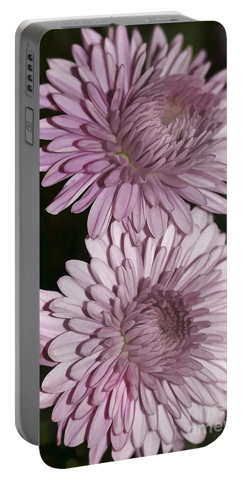 Flowers Portable Battery Charger featuring the photograph Purple Duo by Deborah Benoit
