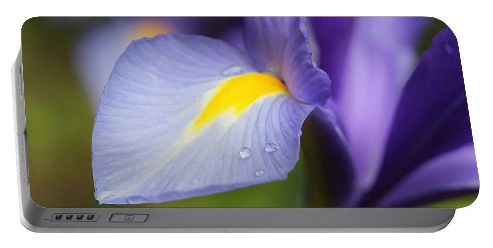 Dutch Iris Portable Battery Charger featuring the photograph Purple Dutch Iris Flower Macro by Jennie Marie Schell