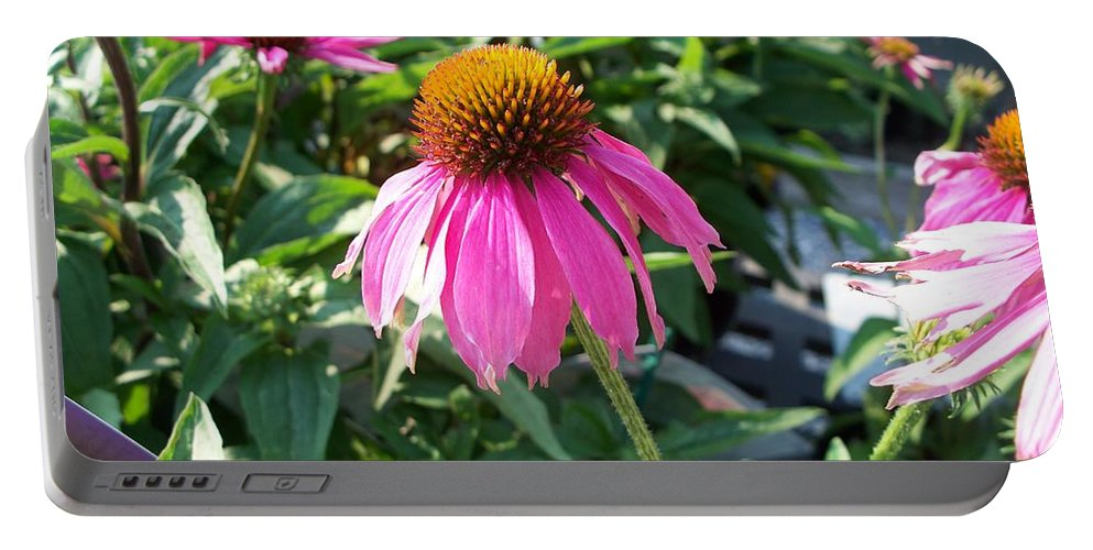 Floral Portable Battery Charger featuring the photograph Purple Flower by Eric Schiabor