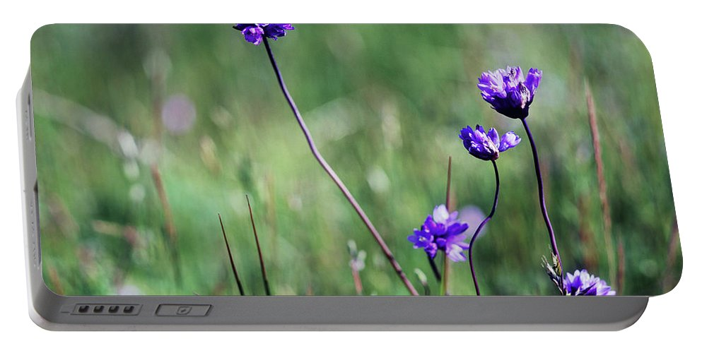 Purple Portable Battery Charger featuring the photograph Purple Flowers by Jim And Emily Bush