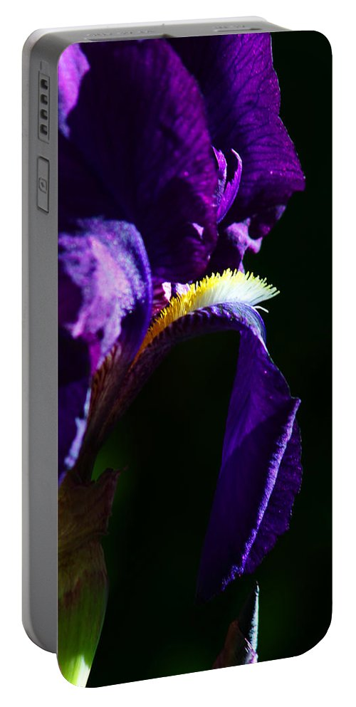 Flower Portable Battery Charger featuring the photograph Purple Iris 2 by Anthony Jones