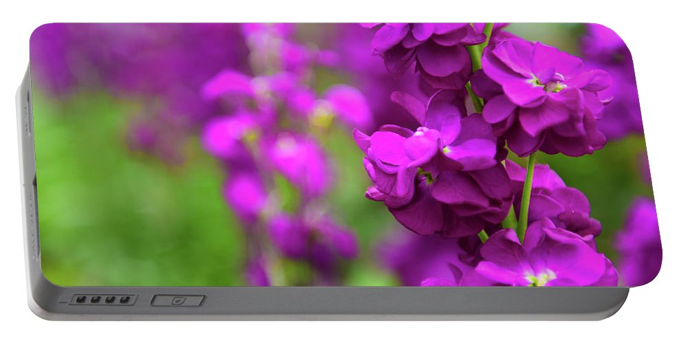 Flower Portable Battery Charger featuring the photograph Purple by Kevin Williams