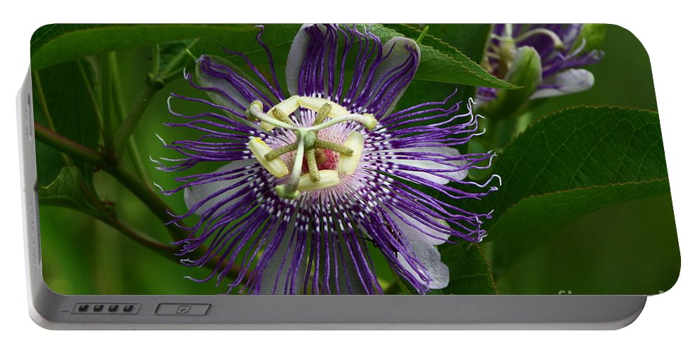 Passion Flower Portable Battery Charger featuring the photograph Purple Passion Flower by Barbara Bowen