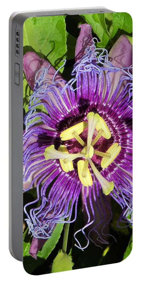 Flower Portable Battery Charger featuring the photograph Purple Passion Flower by Sarah Barba