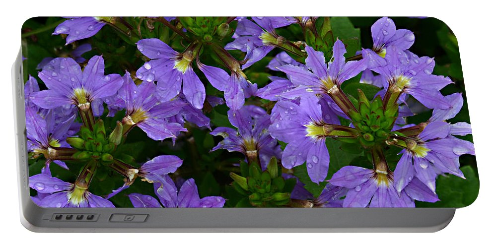 Purple Flower Plant Green Photograph Photography Portable Battery Charger featuring the photograph Purple Perspective by Shari Jardina