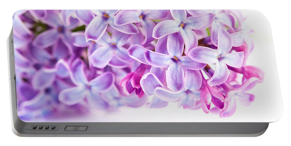 Lilac Portable Battery Charger featuring the photograph Purple Spring Lilac Flowers Blooming by Michal Bednarek