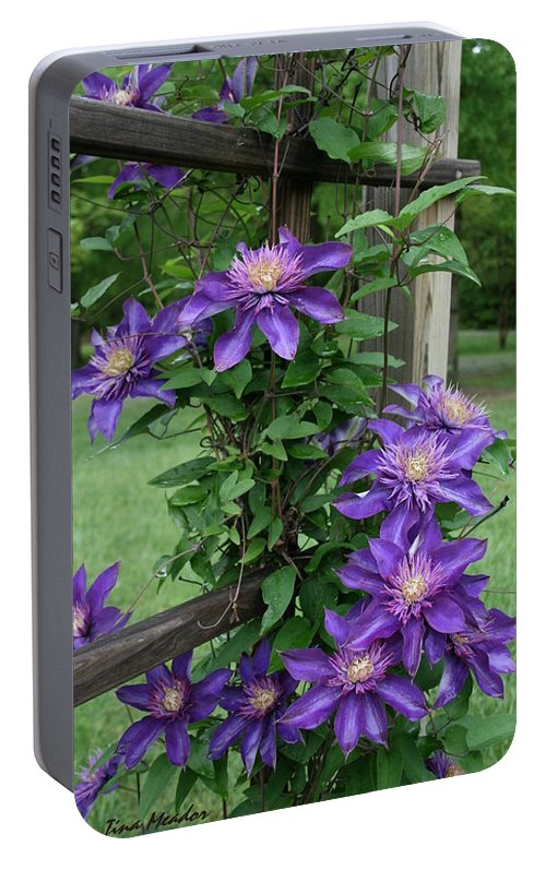 Purple Portable Battery Charger featuring the photograph Purple by Tina Meador