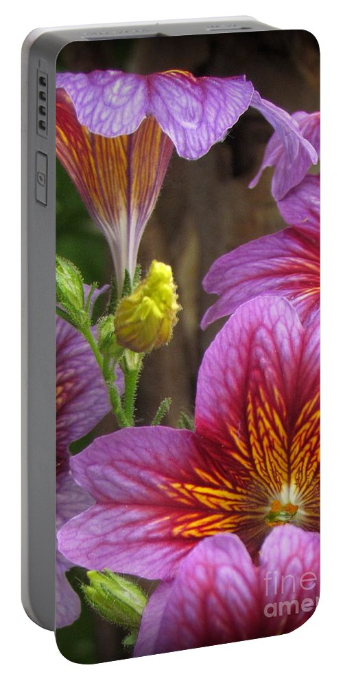 Purple Flowers Photographed In Montrose Portable Battery Charger featuring the photograph Purple Trumpets by Krista Carofano