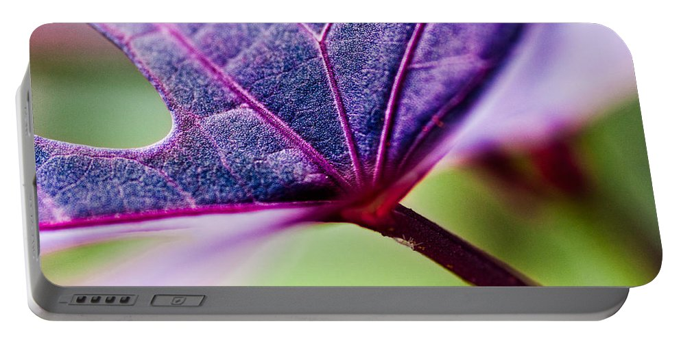 Flora Portable Battery Charger featuring the photograph Purple Veins by Christopher Holmes