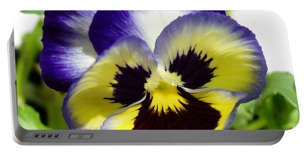 Pansy Portable Battery Charger featuring the photograph Purple White And Yellow Pansy by Nancy Mueller
