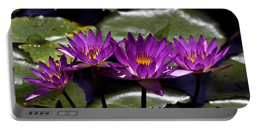 Fine Art Photo Portable Battery Charger featuring the photograph Quad Four Two by Ken Frischkorn