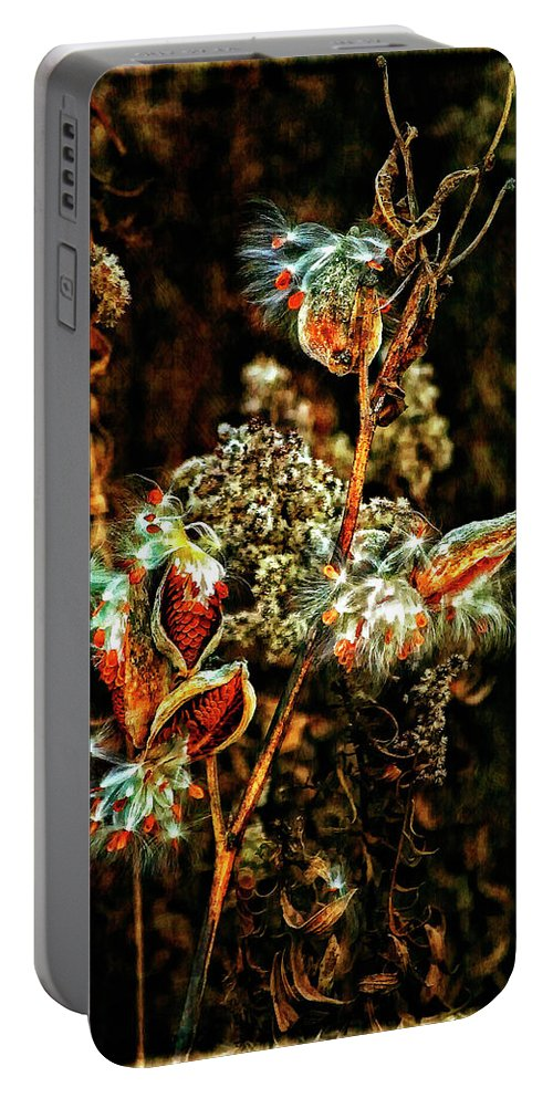 Milkweed Portable Battery Charger featuring the photograph Queen Of The Ditches II by Steve Harrington