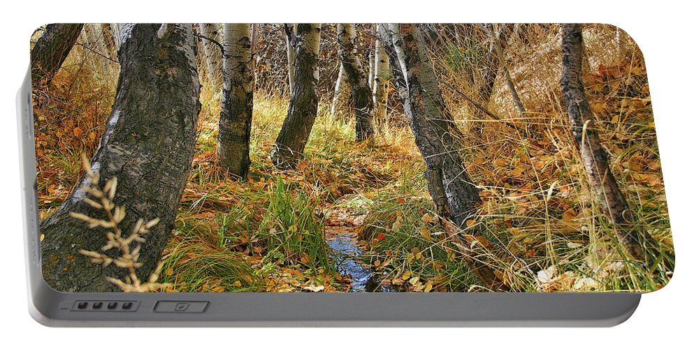 Trees Portable Battery Charger featuring the photograph Quiet Stream by Rosalyn Zacha