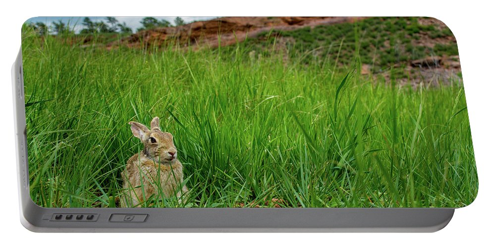 Animal Portable Battery Charger featuring the photograph Rabbit In The Grass by Rob Lantz