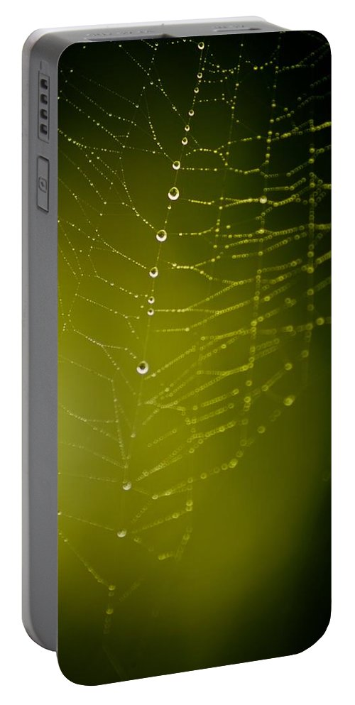Spider Portable Battery Charger featuring the photograph Rain Down On Me by Danielle Silveira
