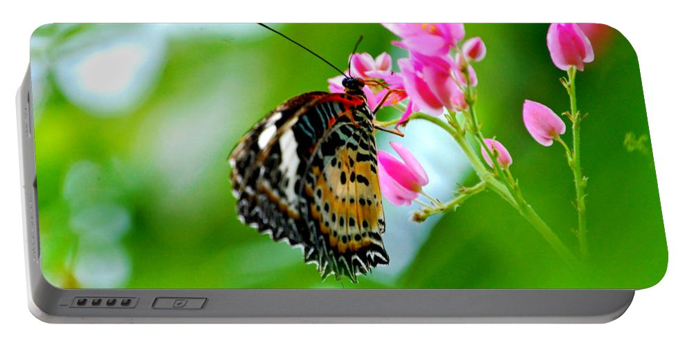 Butterfly Portable Battery Charger featuring the photograph Rainbow Butterfly by Peggy Franz