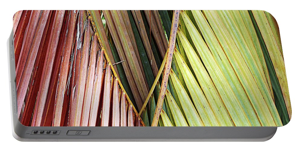 Florida Portable Battery Charger featuring the photograph Rainbow Of Palms Gp by Chris Andruskiewicz