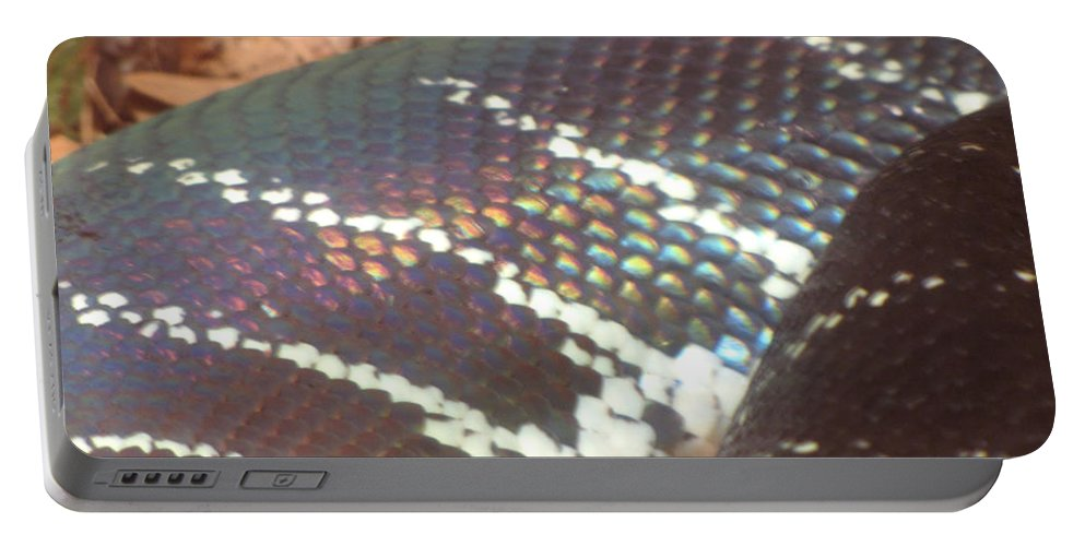 Snake Portable Battery Charger featuring the photograph Rainbow Scales by Sarah Houser