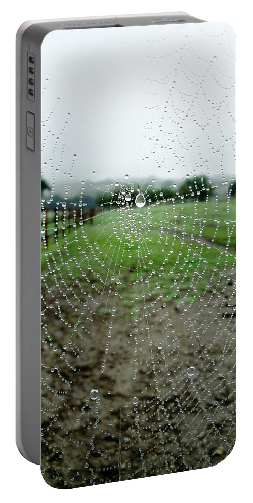 Web Portable Battery Charger featuring the photograph Raincatcher Web by Susan Baker