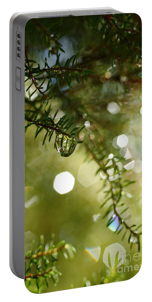 Dew Portable Battery Charger featuring the photograph Raindrops by Gaspar Avila