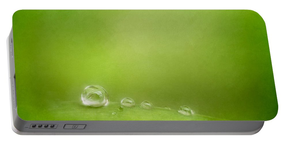 Water Drops Portable Battery Charger featuring the photograph Raindrops On Green by Scott Norris
