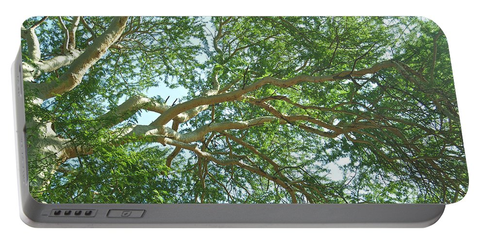 Canopy Portable Battery Charger featuring the photograph Rainforest Canopy by Michael Peychich