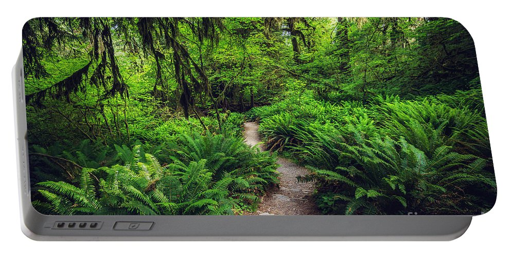 Rainforest Portable Battery Charger featuring the photograph Rainforest Trail by Joan McCool