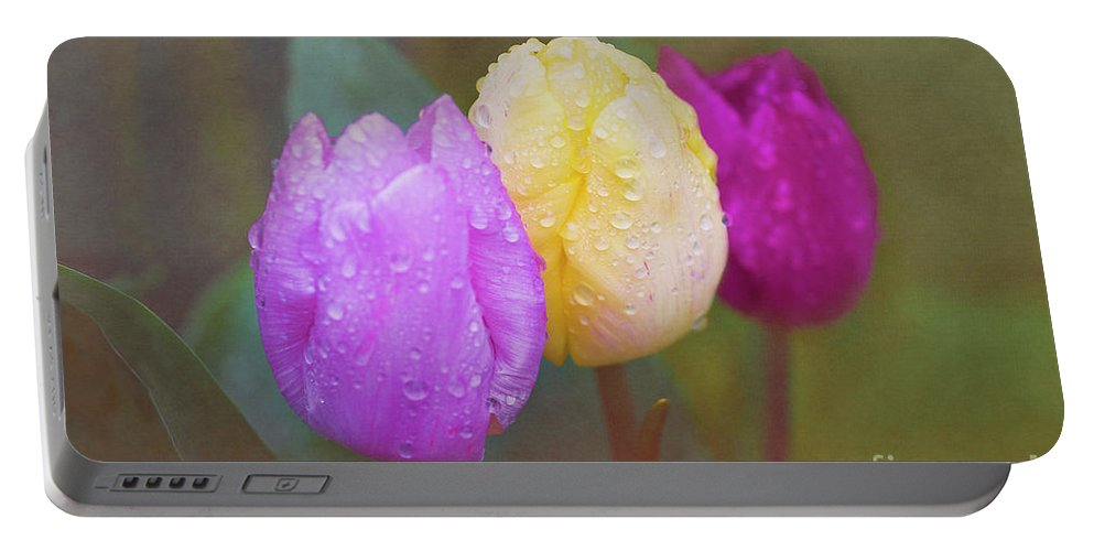 Tulips Portable Battery Charger featuring the photograph Rainy Day Tulips by Terri Waters