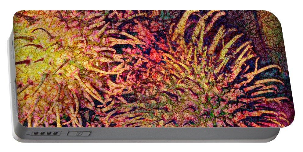 Rambutan Portable Battery Charger featuring the digital art Rambutan by Barbara Berney