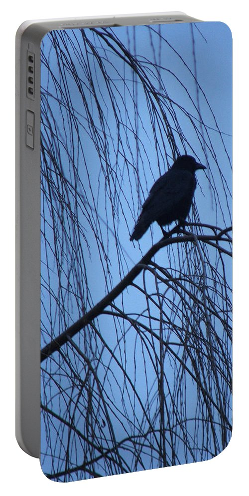 Raven Portable Battery Charger featuring the photograph Raven by Heather Lennox