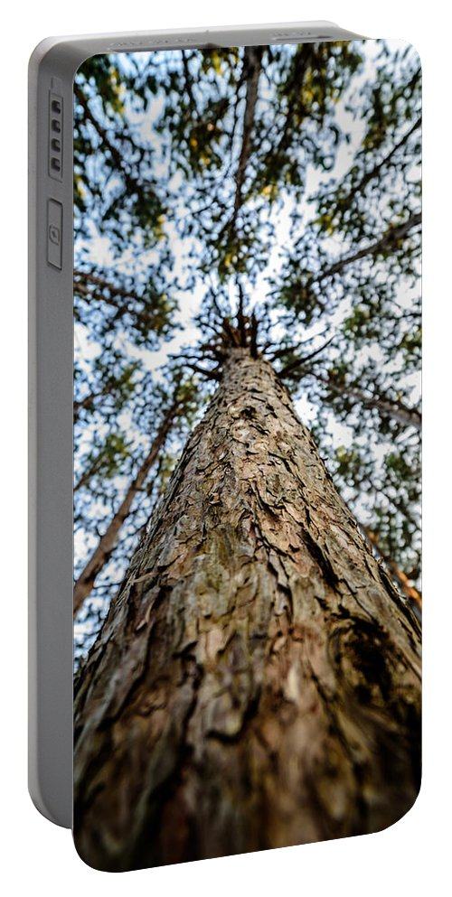 2015 Portable Battery Charger featuring the photograph Reach New Heights by Randy Scherkenbach