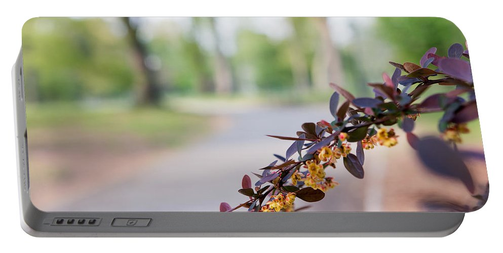 Bloom Portable Battery Charger featuring the photograph Reach by Robert Popa