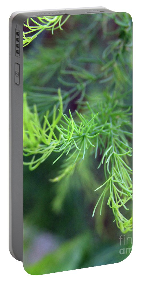 Asparagus Leaves Portable Battery Charger featuring the photograph Reaching Out 2 by Kim Tran
