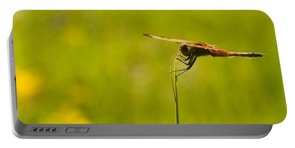 Dragonfly Portable Battery Charger featuring the photograph Ready For Flight by Douglas Barnett