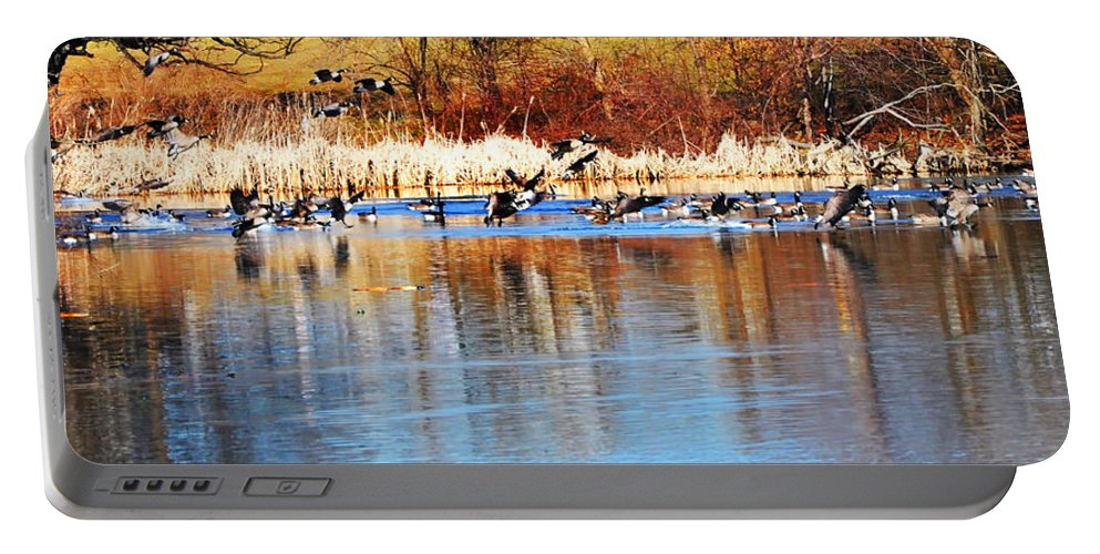 Birds Portable Battery Charger featuring the photograph Ready Get Set Go by Bill Cannon