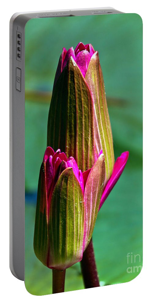 Fine Art Photo Portable Battery Charger featuring the photograph Ready Set Go by Ken Frischkorn