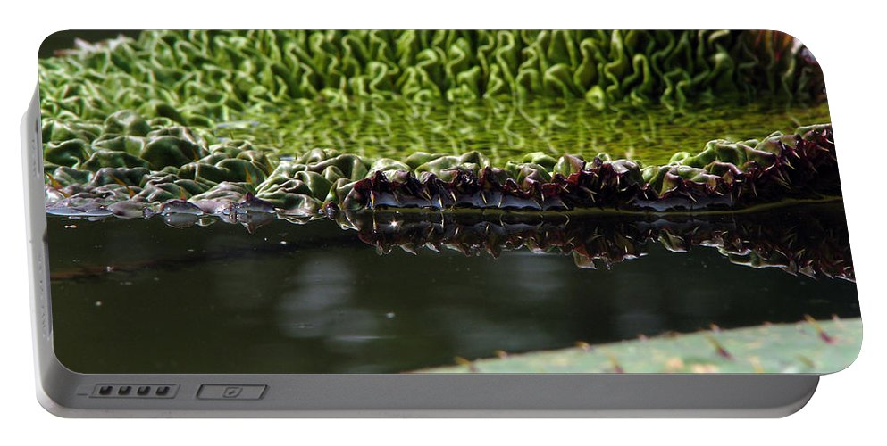 Lillypad Portable Battery Charger featuring the photograph Ready To Spread by Amanda Barcon
