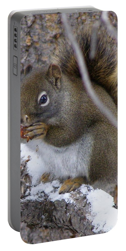Squirrel Portable Battery Charger featuring the photograph Reaping What We Sow by DeeLon Merritt