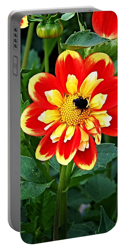 Flower Portable Battery Charger featuring the photograph Red And Yellow Flower With Bee by Anthony Jones