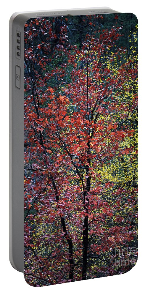 Landscape Portable Battery Charger featuring the photograph Red And Yellow Leaves Abstract Vertical Number 1 by Heather Kirk