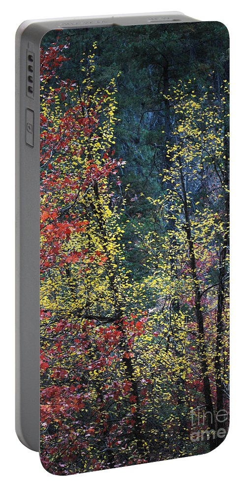 Landscape Portable Battery Charger featuring the photograph Red And Yellow Leaves Abstract Vertical Number 2 by Heather Kirk