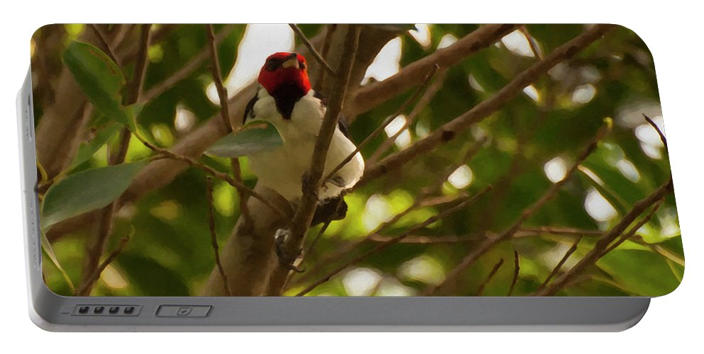 Red Capped Cardinal Portable Battery Charger featuring the photograph Red-capped Cardinal Digital Oil by Chris Flees