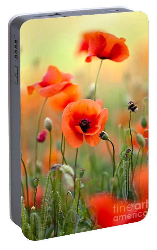 Red Corn Poppy Flowers 06 Portable Battery Charger For Sale By