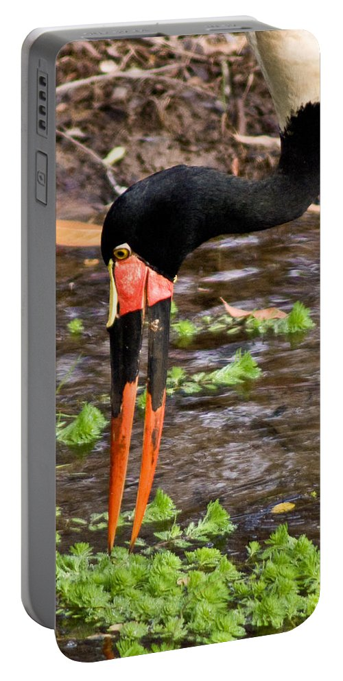 Red Portable Battery Charger featuring the photograph Red-crowned Crane by Douglas Barnett