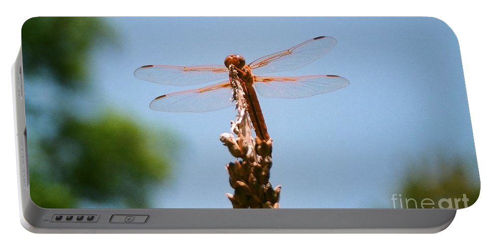Dragonfly Portable Battery Charger featuring the photograph Red Dragonfly by Dean Triolo