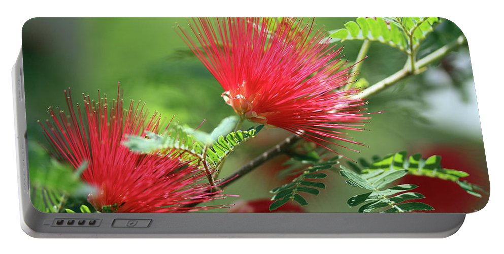 Flower Portable Battery Charger featuring the photograph Red Explosion by Douglas Milligan