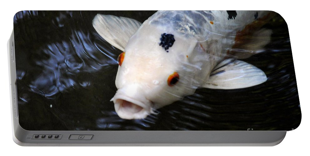 Clay Portable Battery Charger featuring the photograph Red Eyes by Clayton Bruster
