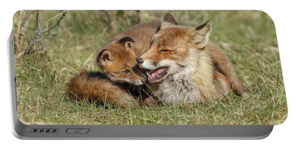 Alert Portable Battery Charger featuring the photograph Red Fox Cub Love by Menno Schaefer