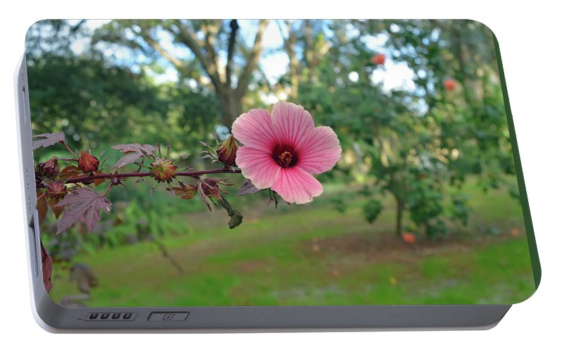 Red Leaf Hibiscus Flower Portable Battery Charger For Sale By Aimee