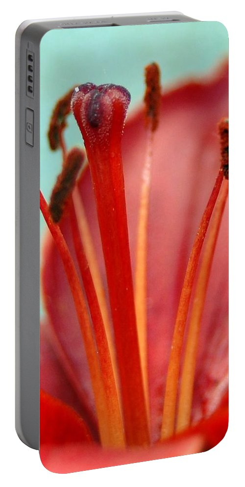 Flower Portable Battery Charger featuring the photograph Red Lily Reach by Amy Fose